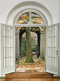 Picture: Beech tree in the inner courtyard of the Oriental Building
